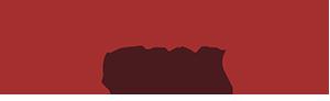 logo_driverscam